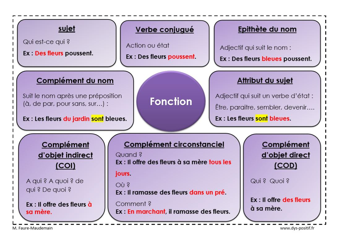 Différencier la nature de la fonction d'un mot. - DYS-POSITIF